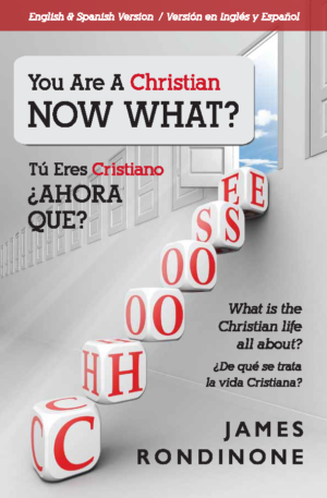 You Are a Christian, Now What Front Cover
